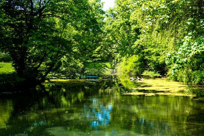 Beaux l'eau cintrée de paysage par arbres photographie stock