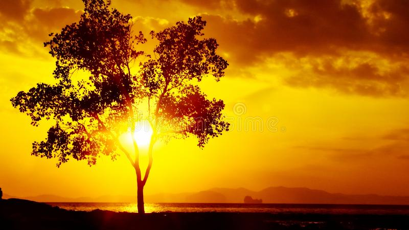 Beaux levers de soleil et couchers du soleil photos libres de droits