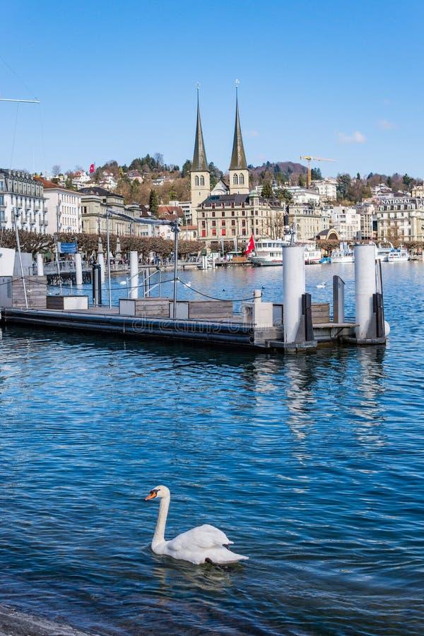 Beaux luzerne, ville le printemps, bateaux et bateaux de lac de vue aérienne images stock