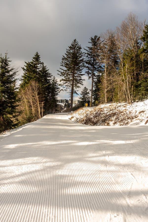 Beaux nature et paysage autour de station de sports d'hiver de raquette dans les cass la Virginie Occidentale image stock