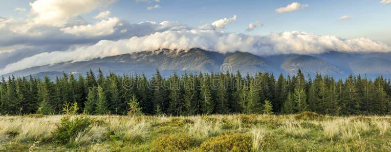 Beaux nuages blancs dramatiques au-dessus des montagnes Forest Hills dedans photo libre de droits