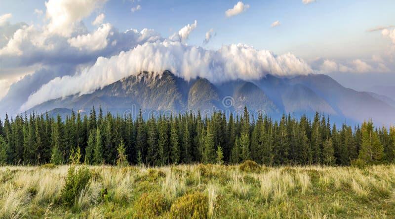 Beaux nuages blancs dramatiques au-dessus des montagnes Forest Hills en montagnes carpathiennes l'ukraine photos libres de droits