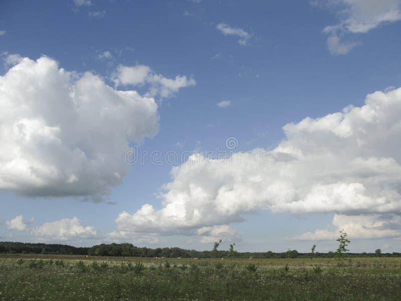 Beaux nuages hollandais images stock