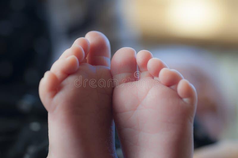 Beaux pieds de bébé photos stock