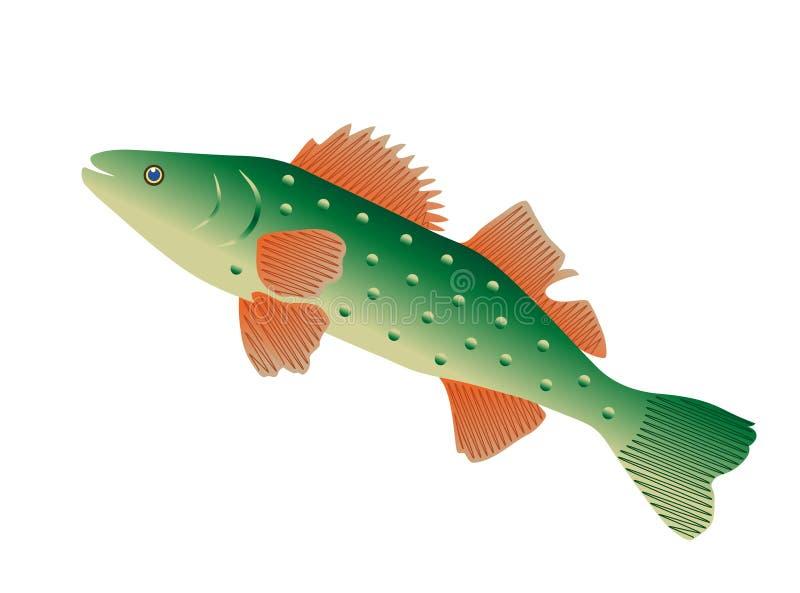 Beaux poissons verts colorés illustration stock