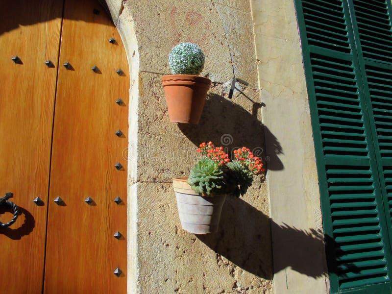 Beaux pots succulents d'usine dans Valldemossa, Espagne image stock