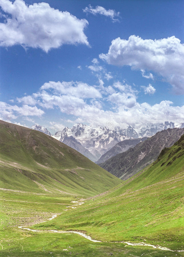 Beaux prés alpins photos libres de droits