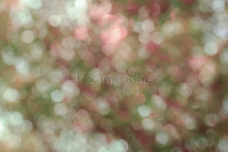 Beaux ressort et fond abstraits colorés d'été, bokeh des arbres photographie stock libre de droits