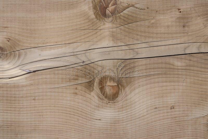 Beaux rondins en bois embranchés jaunâtres criqués photo stock