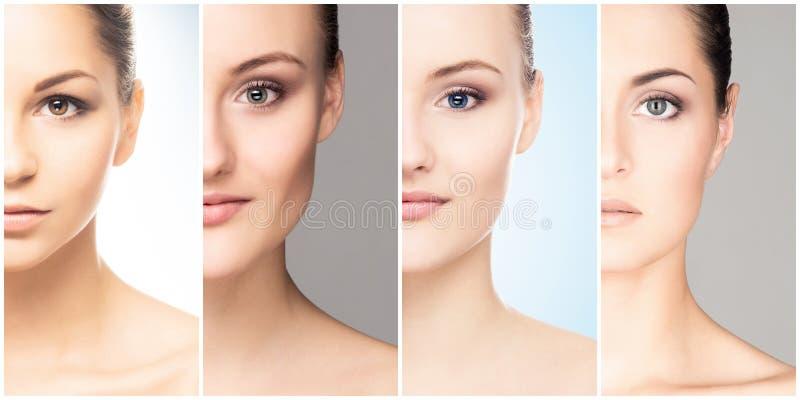 Beaux, sains et jeunes portraits femelles Collage de différents visages de femmes Levage de visage, soins de la peau, chirurgie p photos stock