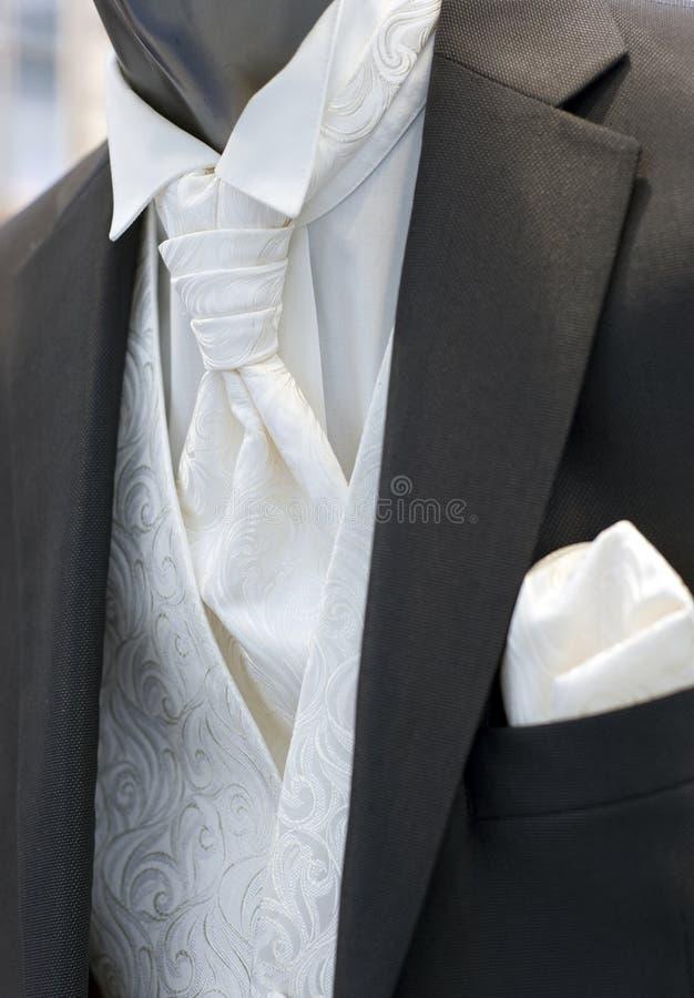 Beaux vêtements modernes de mariage pour le mâle image libre de droits