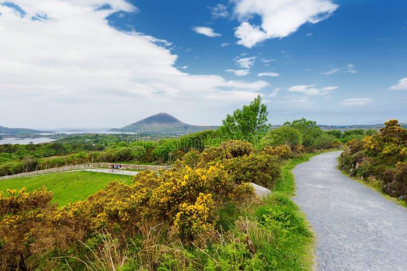 Beaux vue de parc national de Connemara, célèbres pour des marais et des bruyères, observé plus de par sa montagne en forme de cô images stock
