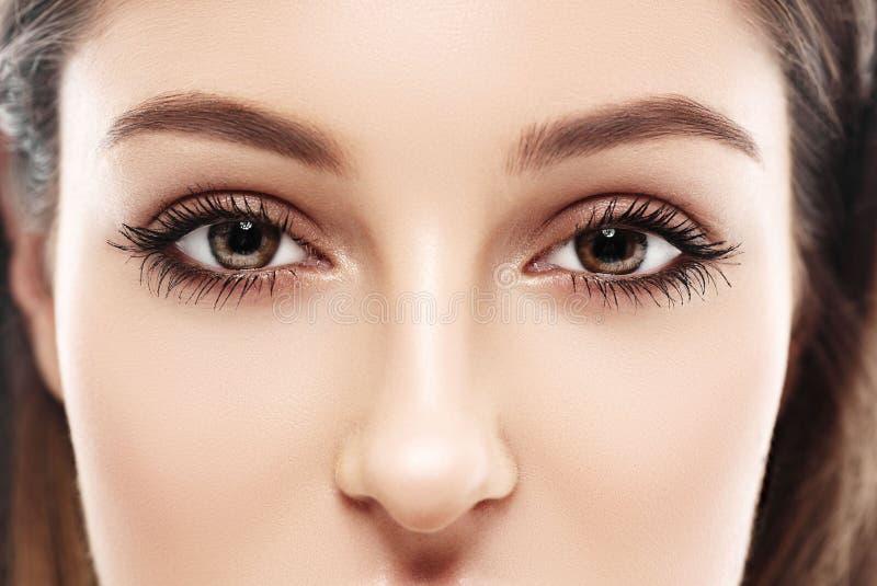Beaux yeux de femme et studio de nez sur le fond blanc image stock