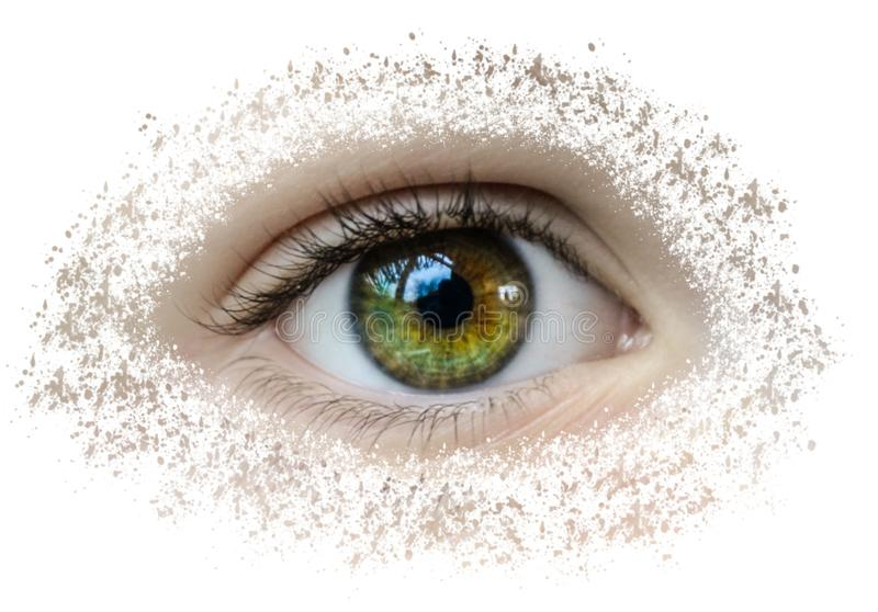 Beaux yeux qui ont commencé à se casser photographie stock