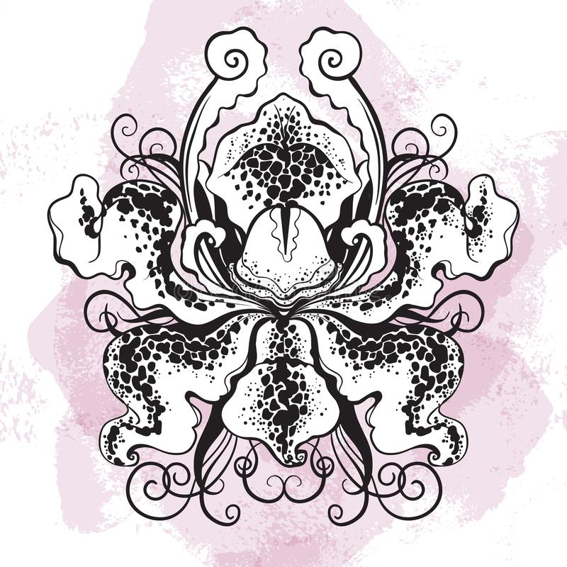 Beauyiful graphic orhid flower on watercolor background. Vector hand-drawn bohemian illustration. Tattwo art, oriental motifs. stock illustration