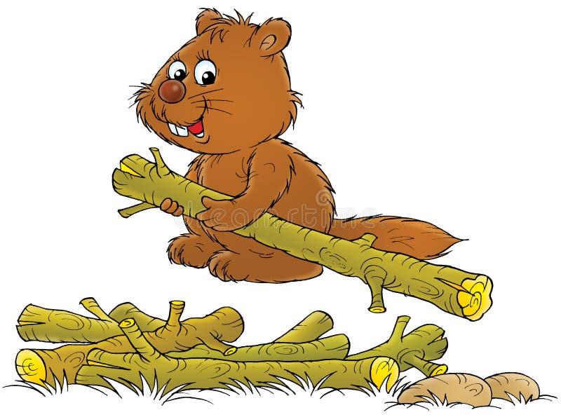 beaver royalty ilustracja