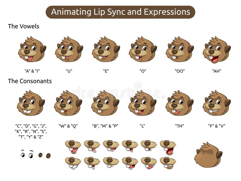 Beaver Cartoon Character Mascot Illustration for Animating Lip Sync and Expressions. Vector illustration, in isolated white background stock illustration