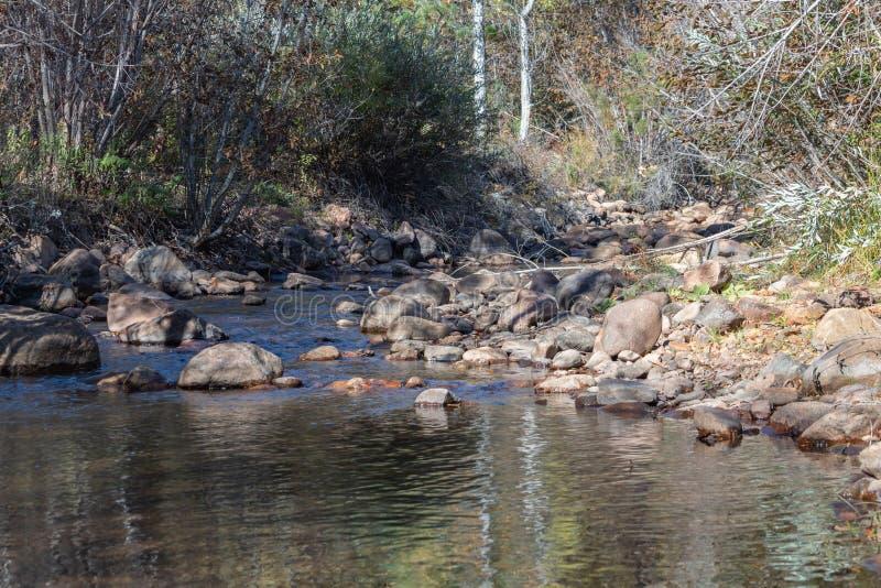 Beaver Creek in Colorado stock foto's