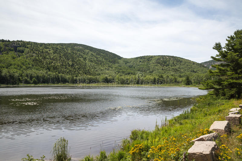 Beaver Dam Pond in Acadia National Park. In Maine royalty free stock images