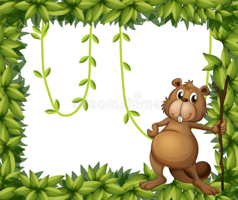 Download A Beaver Holding A Stick On A Leafy Frame Stock Image - Image: 29373651