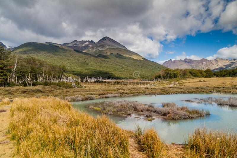 Beaver lake in Tierra del Fuego stock photos