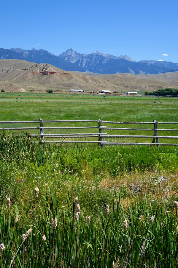 Beaverhead-Berge nähern sich Lachsen, Idaho stockfotos