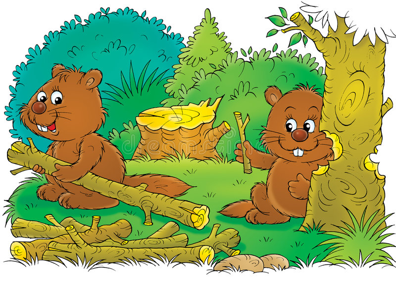 Beavers at work stock illustration