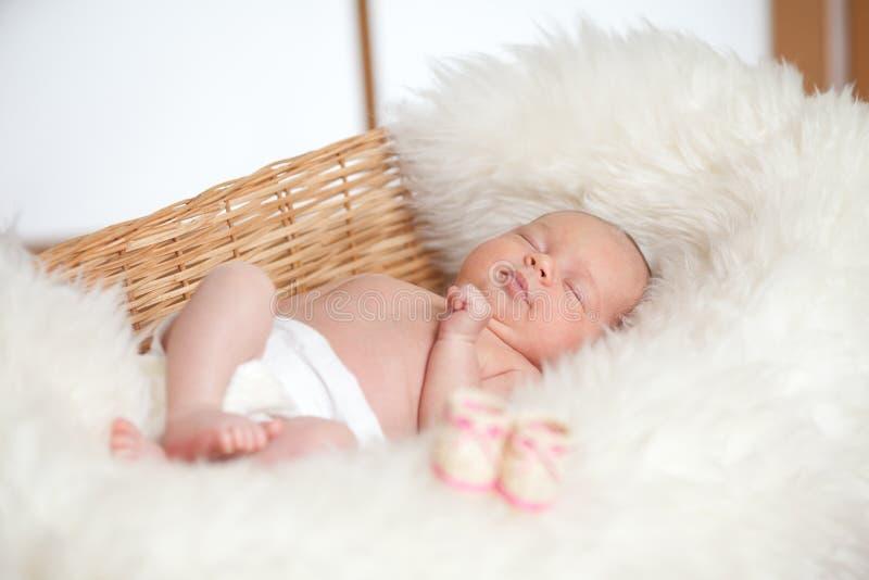 Bebé adorable recién nacido que duerme en cesta imagenes de archivo