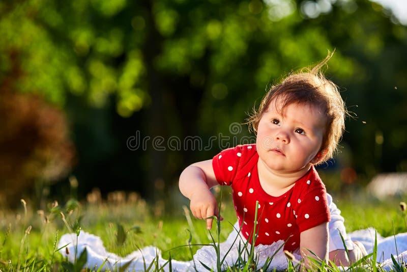 Bebé agradable adorable lindo en sentarse sonriente del vestido de la primavera roja debajo del árbol foto de archivo