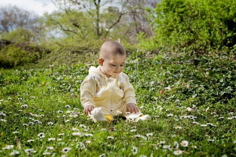 Bebé bonito fotografia de stock royalty free