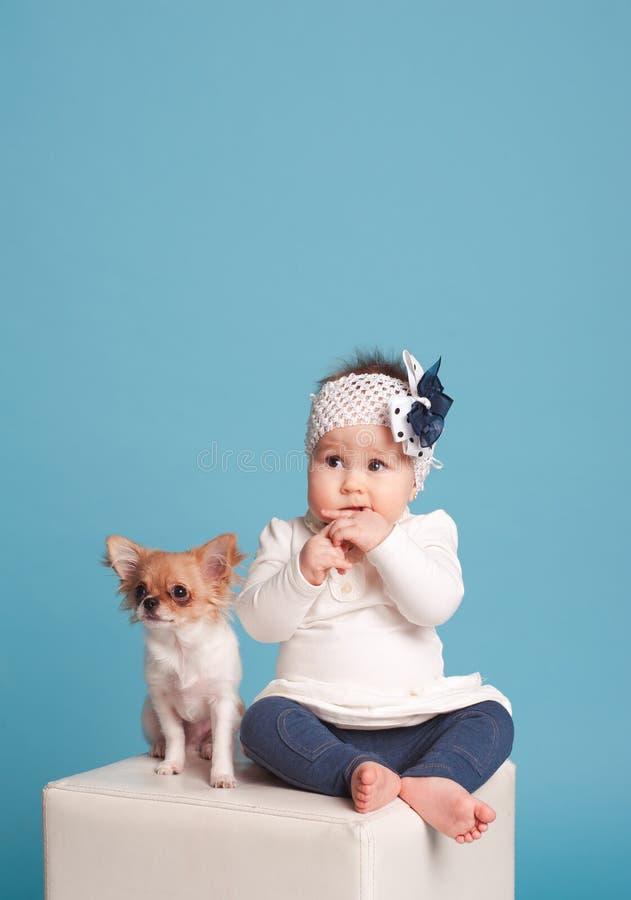 Bebé con la chihuahua fotografía de archivo