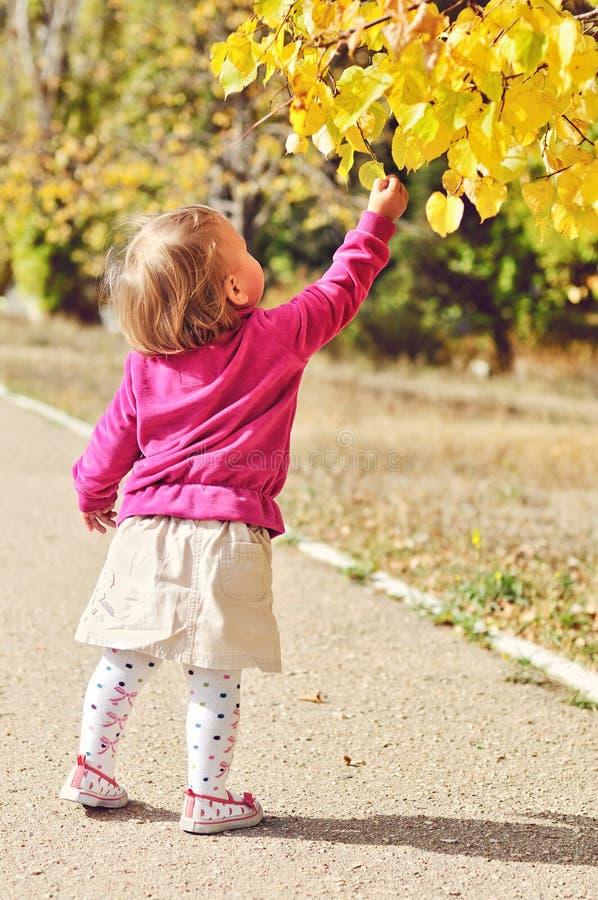 Bebé con las hojas de otoño fotografía de archivo libre de regalías