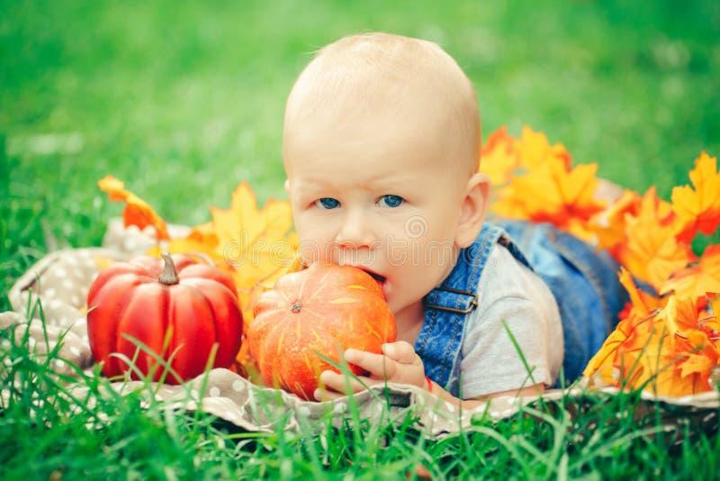 Bebé con los ojos azules en la camiseta y el mameluco de los vaqueros que mienten en prado del campo de hierba en hojas de otoño  foto de archivo