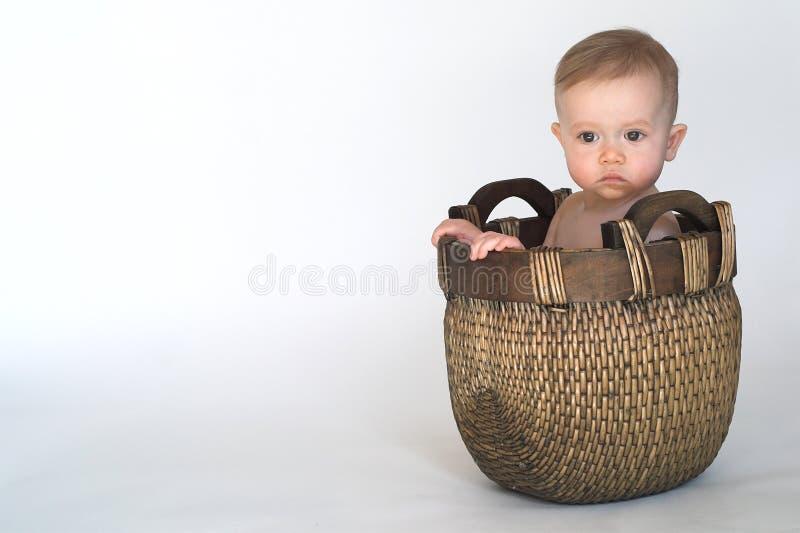 Bebé de la cesta foto de archivo libre de regalías