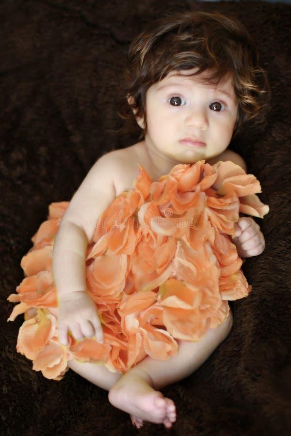 Bebé de la flor imagen de archivo