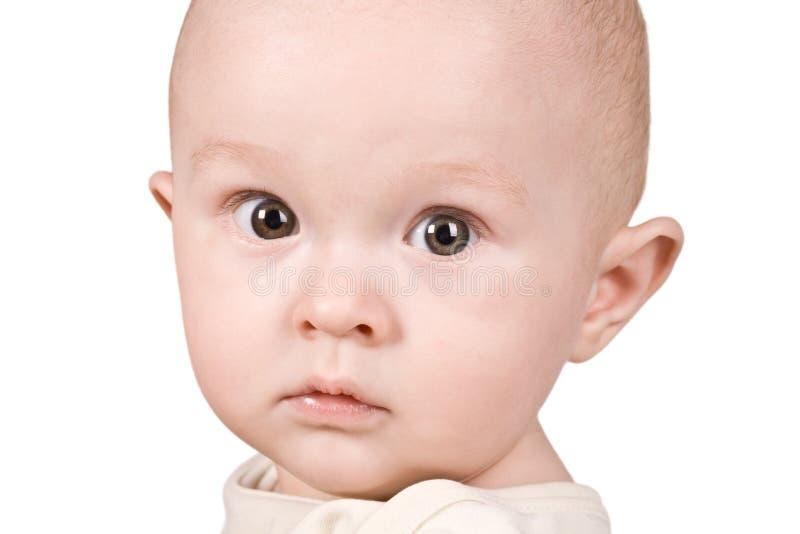 Bebé do retrato fotos de stock