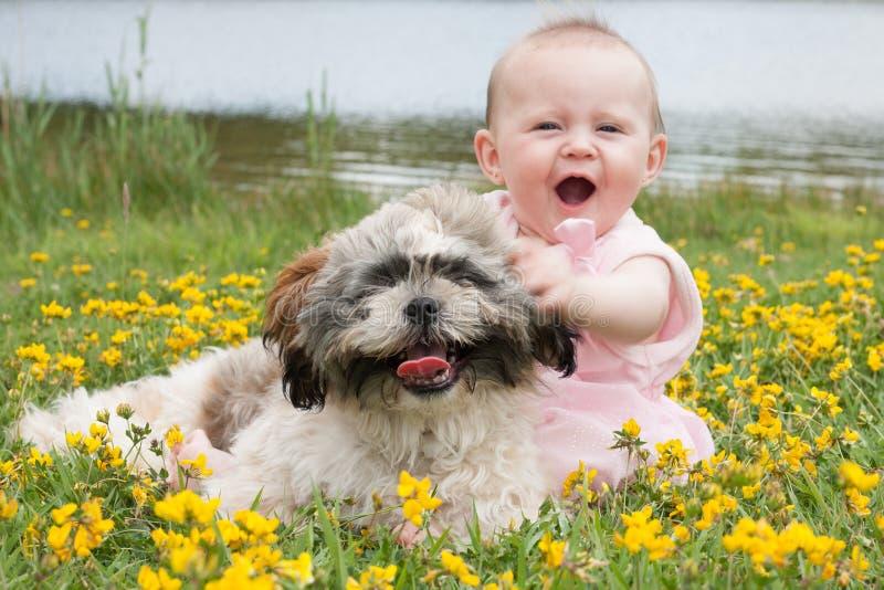 Bebé dulce imagen de archivo