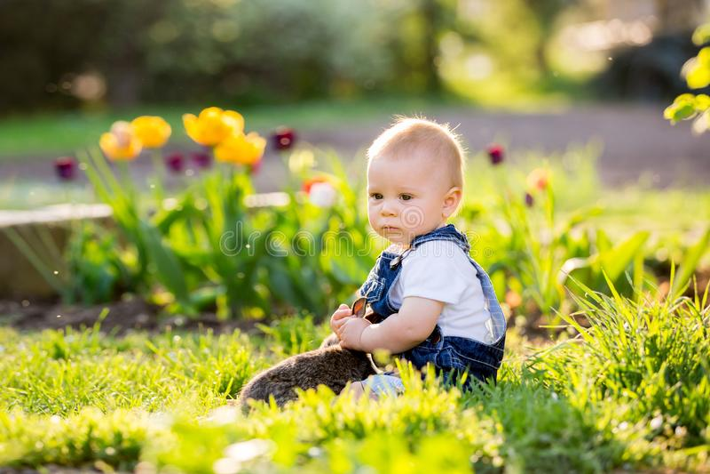 Bebé dulce del niño con su pequeño conejito, sentándose en parque, s imagenes de archivo
