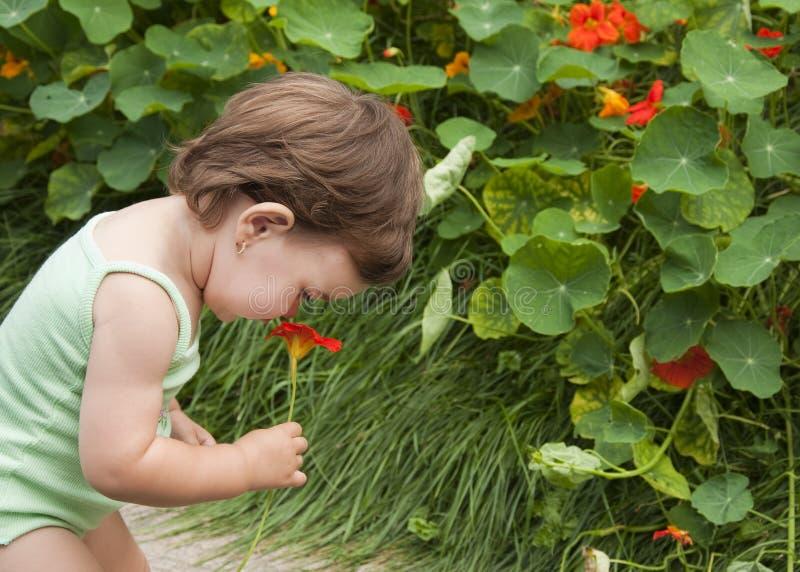 Bebé en el jardín fotos de archivo