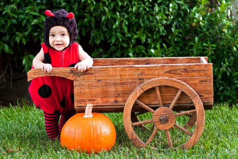 Bebé en el traje de Víspera de Todos los Santos del ladybug al aire libre foto de archivo libre de regalías