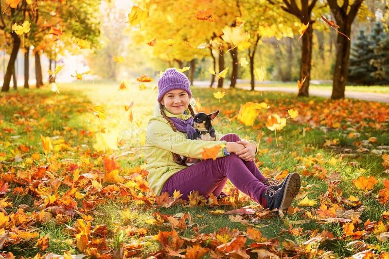 Bebé en hojas de otoño en el parque en el aire fresco muchacha que juega con un pequeño perro al aire libre en otoño fotos de archivo libres de regalías