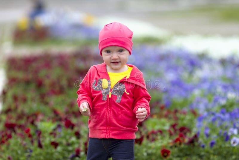 Bebé en jardín de flores fotografía de archivo