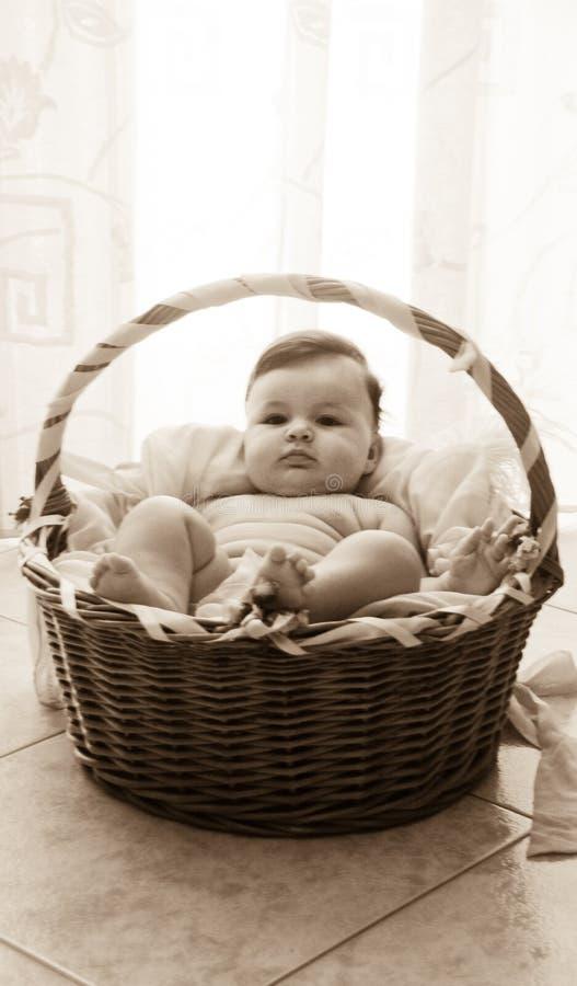 Bebé en la cesta de moses imagenes de archivo