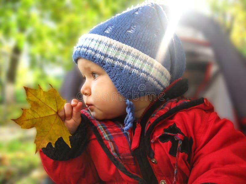 Bebé en la yarda imagen de archivo libre de regalías
