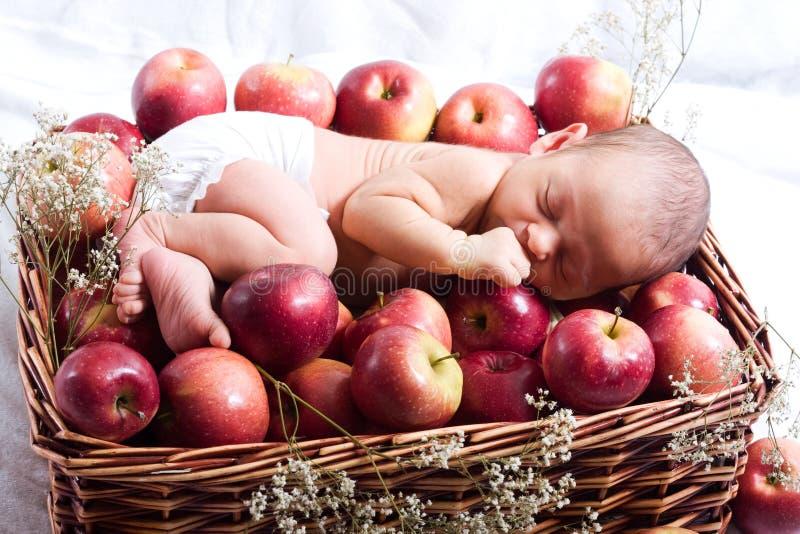Bebé en manzanas imagen de archivo