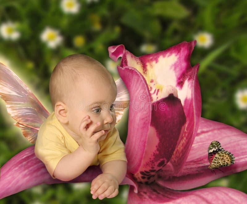 Bebé en orquídea con collage de la mariposa fotografía de archivo