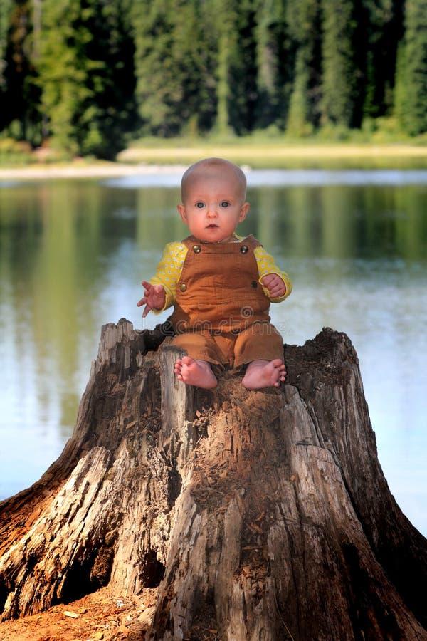 Bebé en tocón foto de archivo libre de regalías