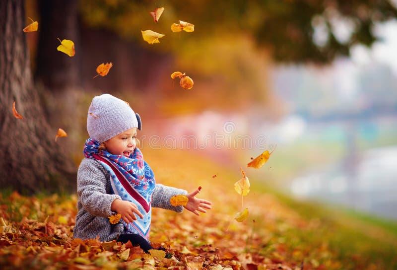 Bebé feliz adorable que coge las hojas caidas, jugando en el parque del otoño imagenes de archivo