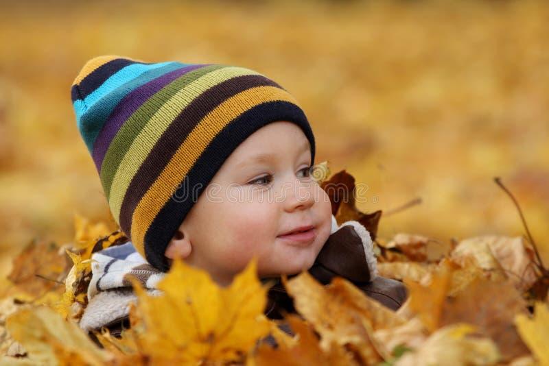 Bebé feliz en hojas de otoño foto de archivo