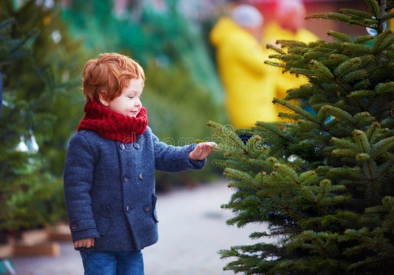 Bebé feliz lindo que elige el árbol de navidad por vacaciones de invierno en el mercado estacional imagen de archivo